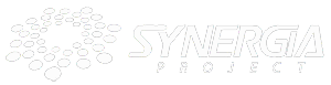 Synergia Project